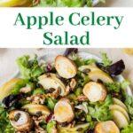 Apple celery salad pinnable image.