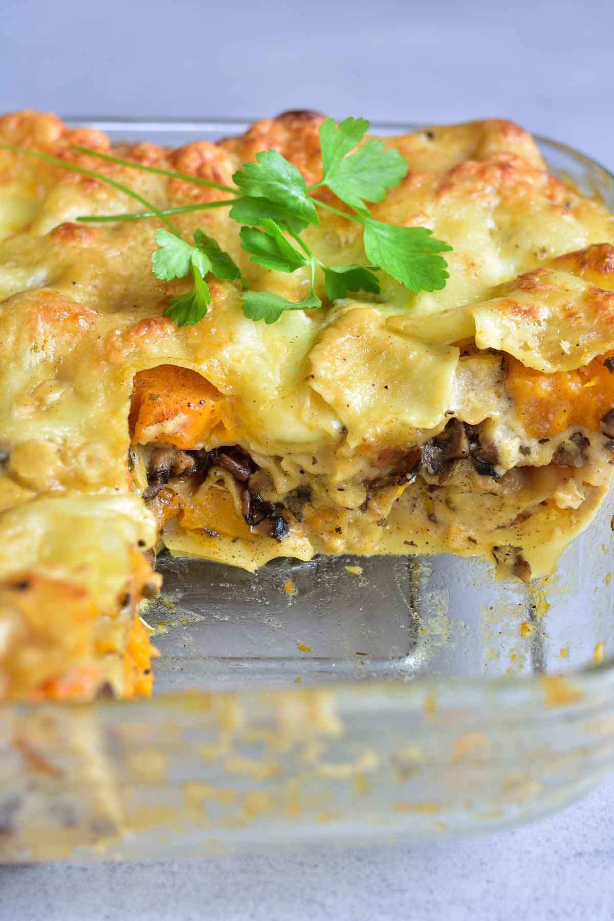 White Lasagna with pumpkin and mushrooms in a baking dish