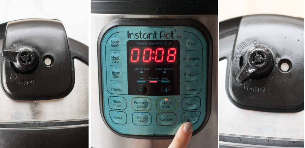 settings on the Instant Pot for chocolate lava cake