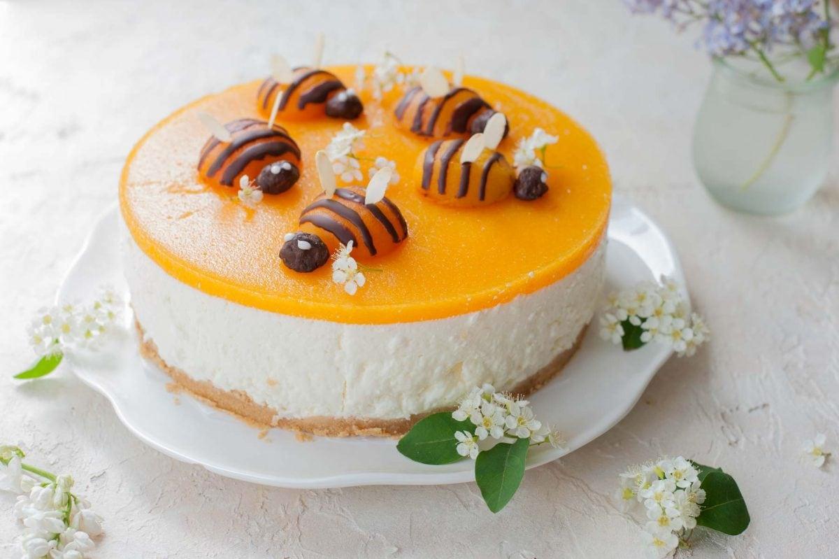 poziome zdjęcie sernika bez pieczenia z jogurtów greckich z musem morelowym i morelowymi pszczołami