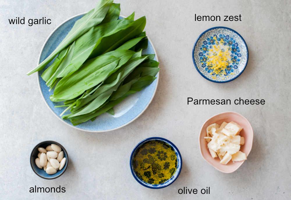 Wild garlic (ramp) pesto ingredients.