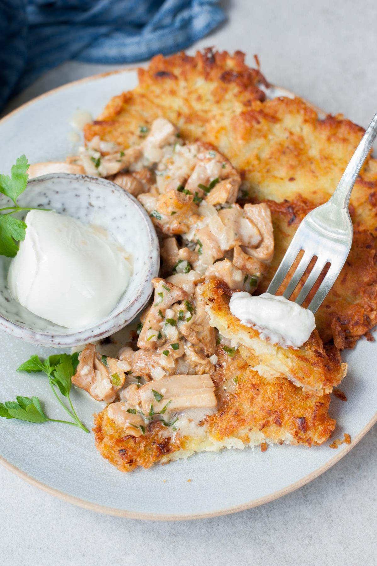 potato pancakes with chanterelle sauce and sour cream sticked on a fork