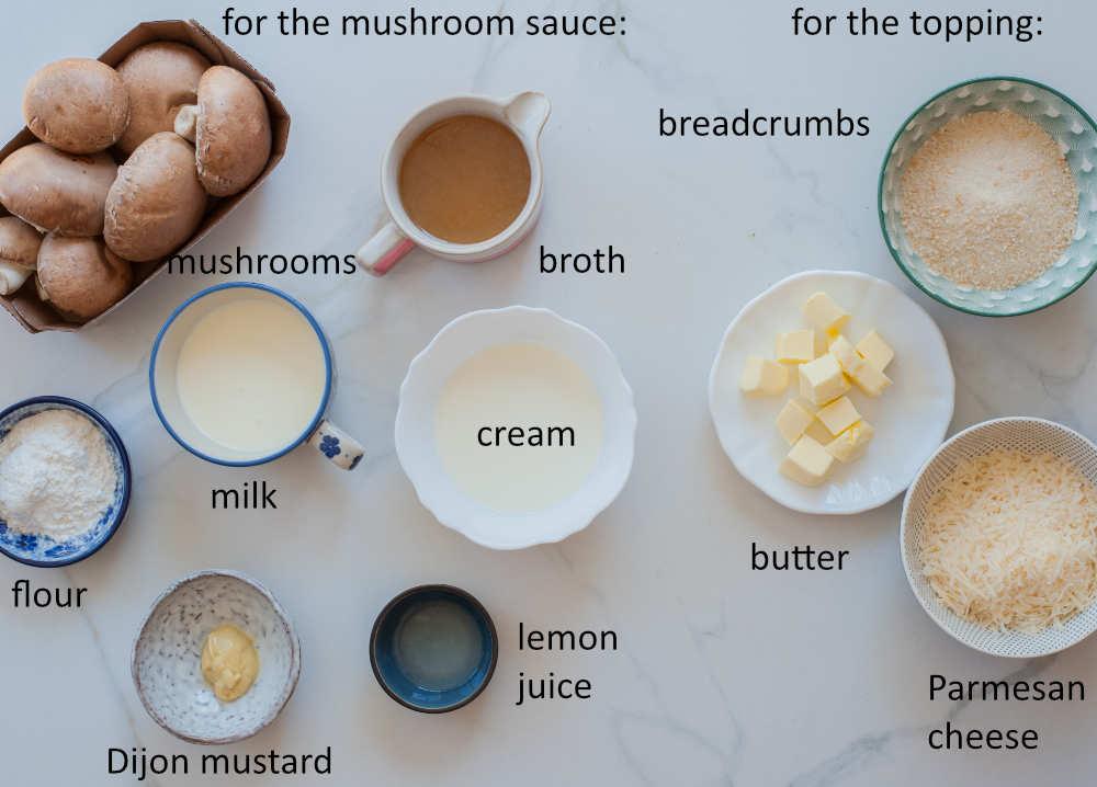 ingredients needed to prepare chicken broccoli rice casserole - part 2