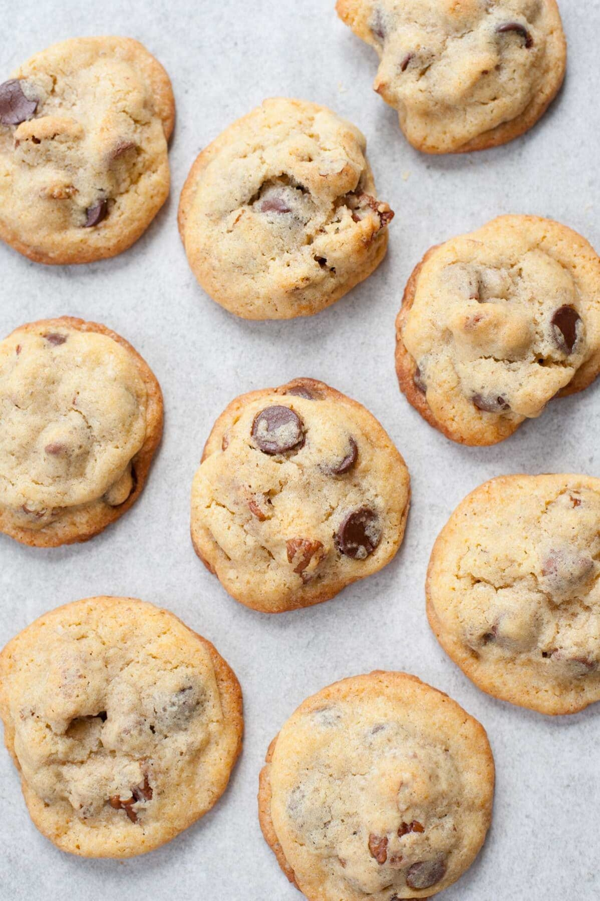 Chocolate chip pecan cookies on a grey background.