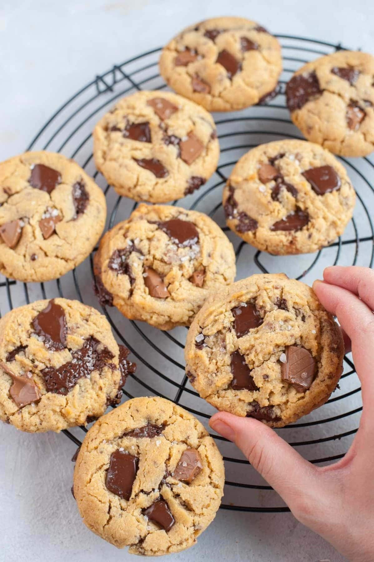 Chocolate chunk peanut butter cookie held in a hand.