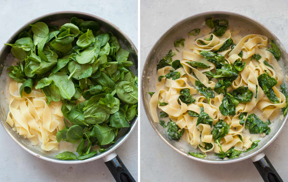Cooked pasta and fresh spinach in a pan. Creamy gorgonzola sauce with spinach and pasta in a pan.