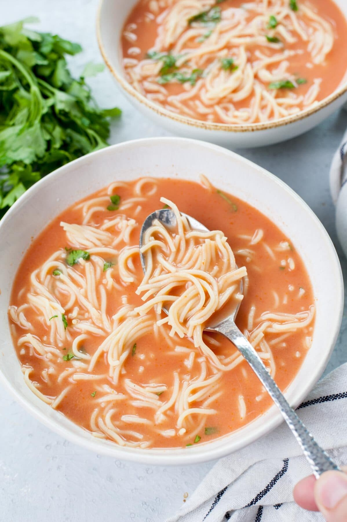 Polish Tomato Soup (zupa pomidorowa) in a white plate, served with noodles and chopped parsley.