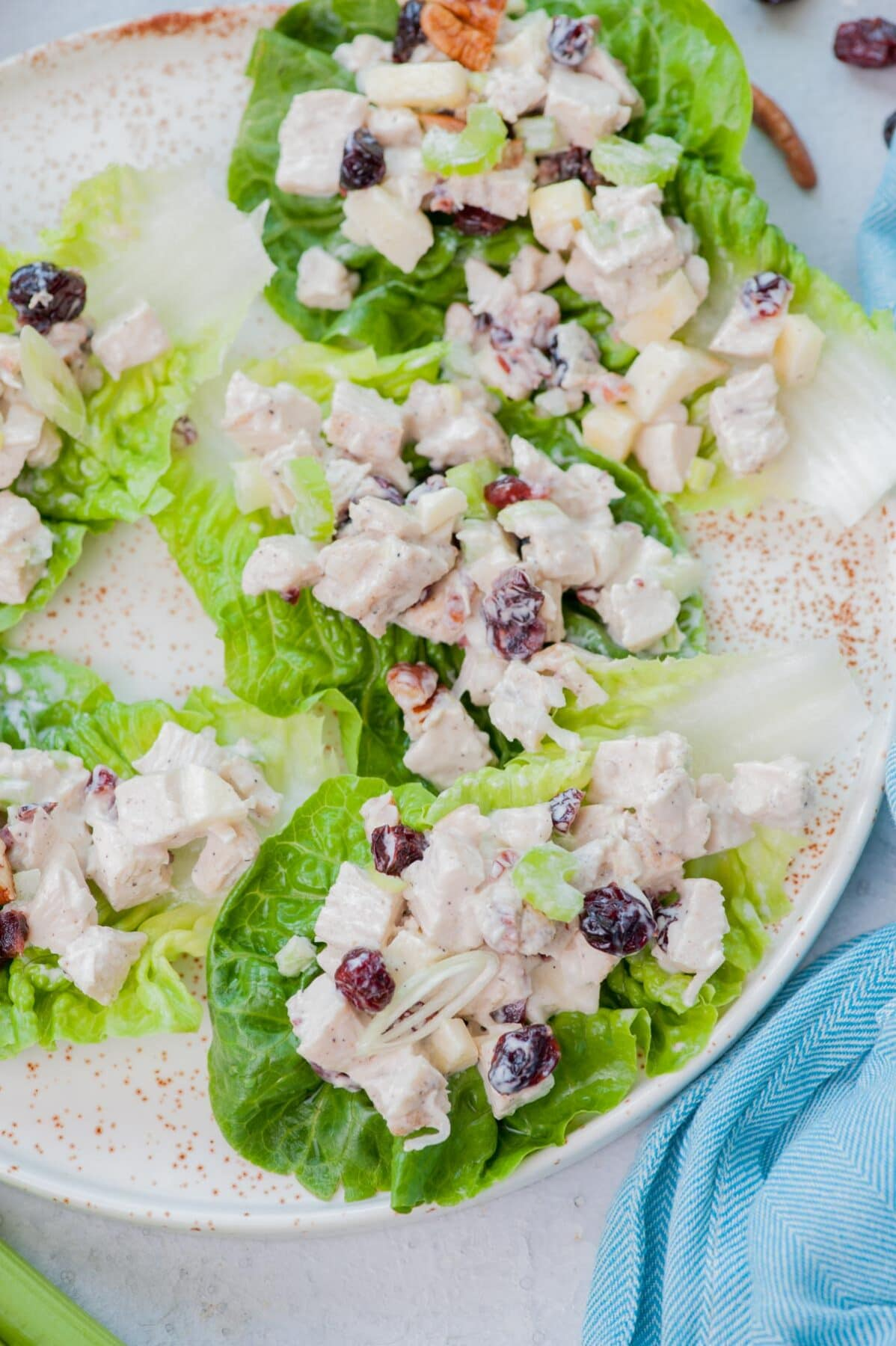 Cranberry chicken salad on lettuce leaves on a white plate.