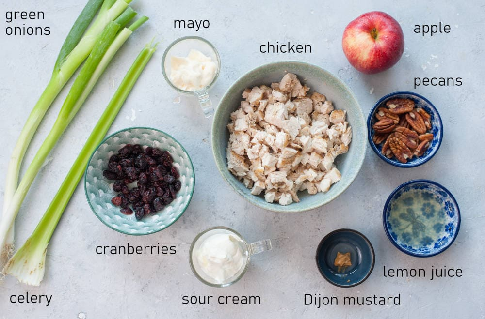 Labeled ingredients for cranberry chicken salad.