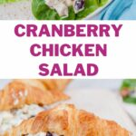 Cranberry chicken salad pinnable image.